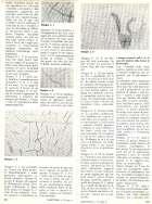 BAMBINI ALLE PRESE CON LA PITTURA ASTRATTA pp.52-53
