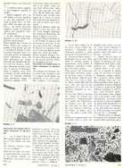 BAMBINI ALLE PRESE CON LA PITTURA ASTRATTA pp.56-57